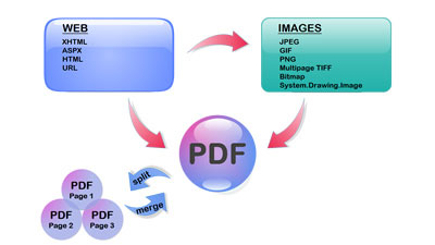 PDF Vision .Net - 100% C# Library.